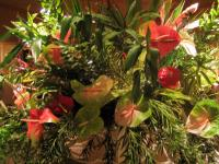 One of the Anthurium arrangements